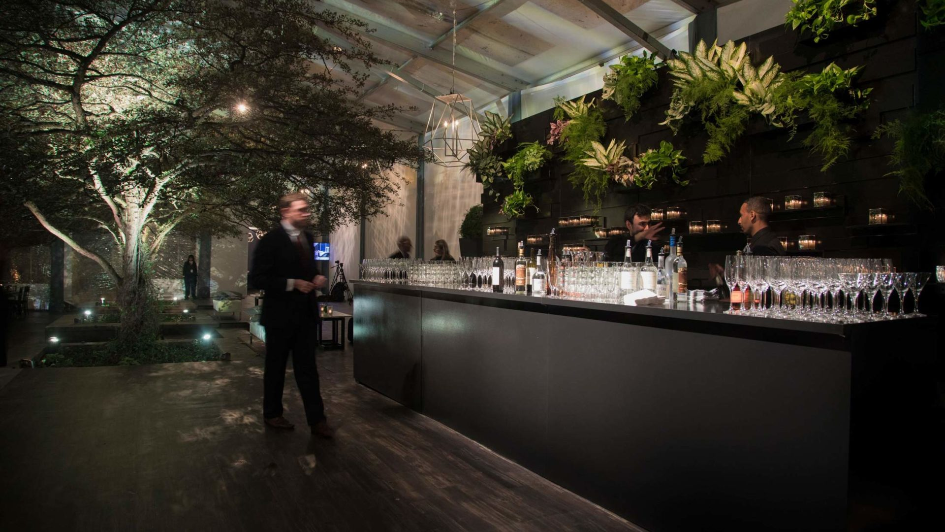 Bar with plants behind