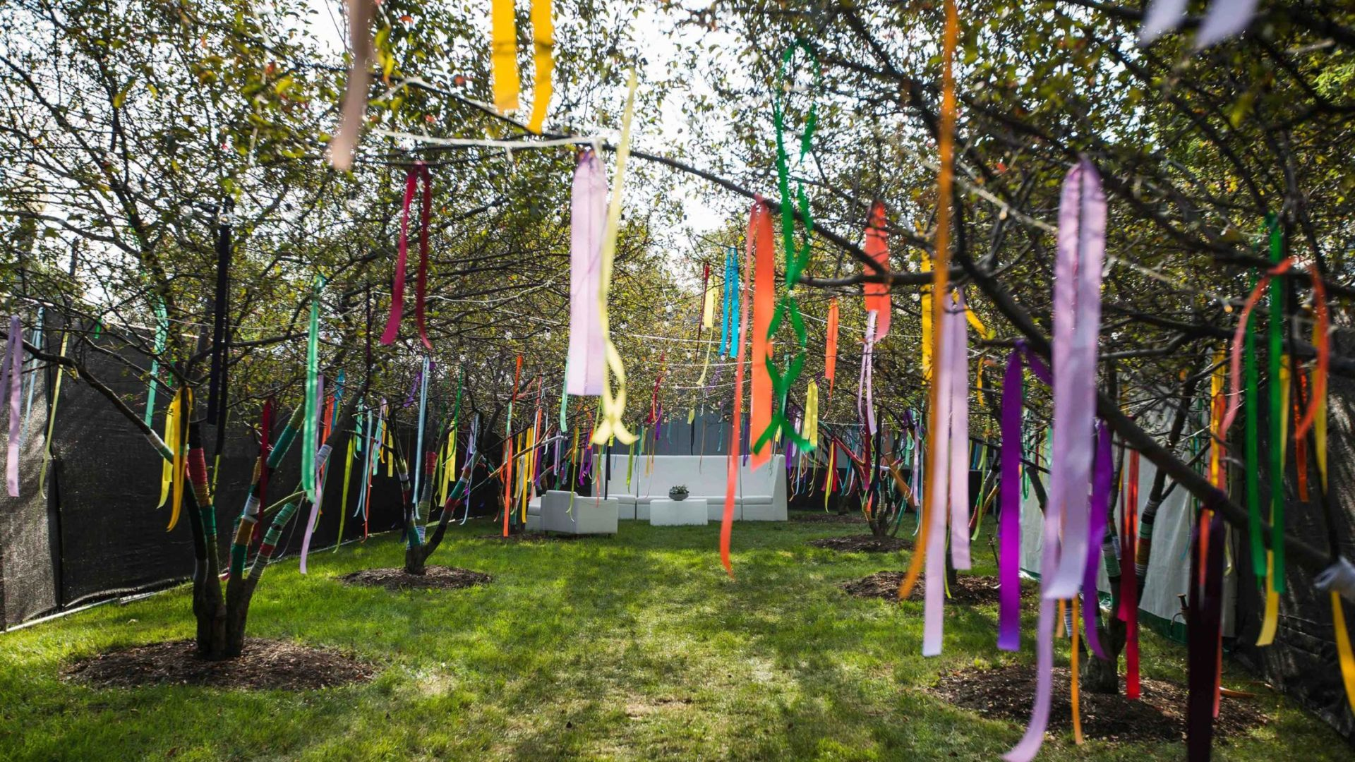 Trees with colorful ribbons hanging from branches